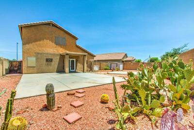 Surprise Single Family Home For Sale: 15491 W Maui Lane
