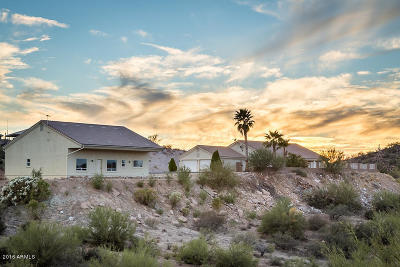 Wickenburg Single Family Home For Sale: 50914 N 292nd Avenue