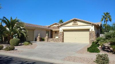 Chandler Single Family Home For Sale: 706 E Runaway Bay Place