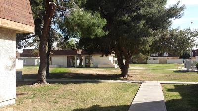 Phoenix Condo/Townhouse For Sale: 8213 N 34th Avenue