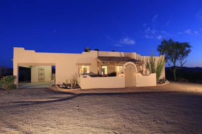 Fort Mcdowell Single Family Home For Sale: 11050 E Boot Hill Parkway