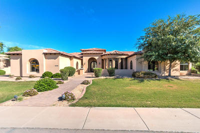 Chandler Single Family Home For Sale: 2838 E Locust Drive
