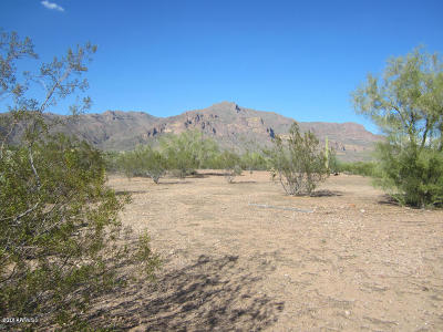 Gold Canyon Residential Lots & Land For Sale: 10340 E Baseline Avenue