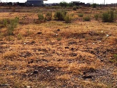 Mesa Residential Lots & Land For Sale: 12606 S Power Road