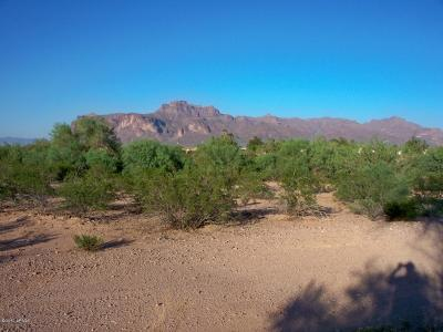 Apache Junction Residential Lots & Land For Sale: 2100 E Old West Highway