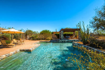 Cave Creek Single Family Home For Sale: 41324 N Canyon Springs Drive