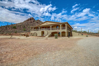 Surprise Single Family Home For Sale: 14906 W Bajada Drive