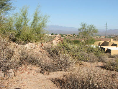 Fountain Hills Residential Lots & Land For Sale: 14821 E Shadow Canyon Drive