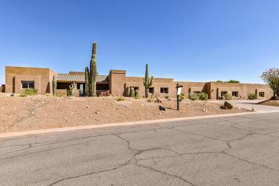 Fountain Hills Single Family Home For Sale: 11041 N Indigo Drive