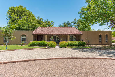 Tempe Single Family Home For Sale: 8637 S Newberry Lane