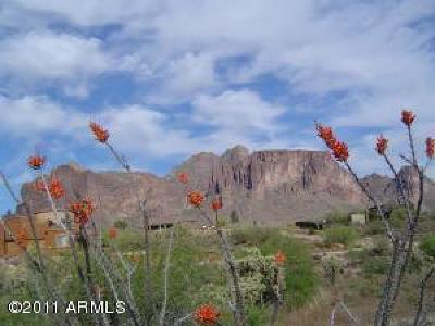 Apache Junction Residential Lots & Land For Sale: 3200 N Nodak (Approx) Road