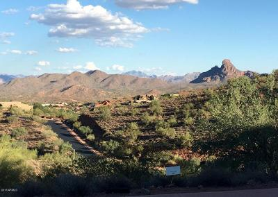 Fountain Hills Residential Lots & Land For Sale: 9619 N Four Peaks Way