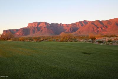 Superstition Mountain Residential Lots & Land For Sale: 9431 E Canyon View Trail