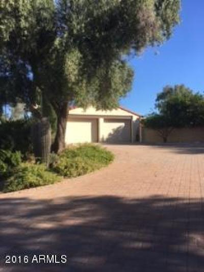 Wickenburg Single Family Home For Sale: 1665 S Maguire Drive