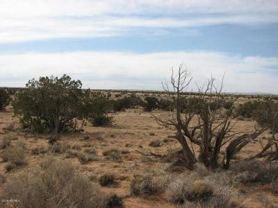 Overgaard Residential Lots & Land For Sale: Lot 241 Chevelon Canyon Ranch