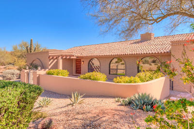 Carefree Single Family Home For Sale: 8901 E Cave Creek Road