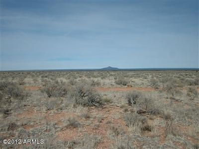 Williams AZ Residential Lots & Land For Sale: $3,500