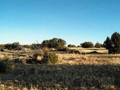Heber Residential Lots & Land For Sale: Sec.13 Antelope Valley