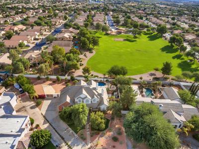 Gilbert Single Family Home For Sale: 593 N Tatum Lane