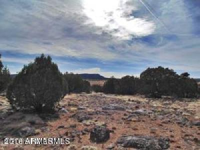 Seligman AZ Residential Lots & Land For Sale: $37,500