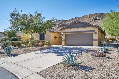 San Tan Valley Single Family Home For Sale: 31986 N Larkspur Drive