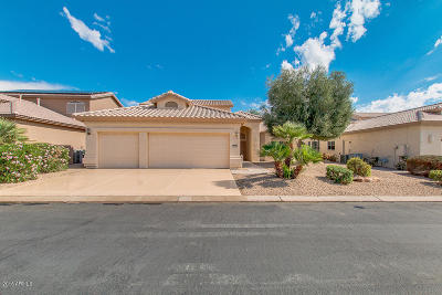 Goodyear Single Family Home For Sale: 3351 N 153rd Drive