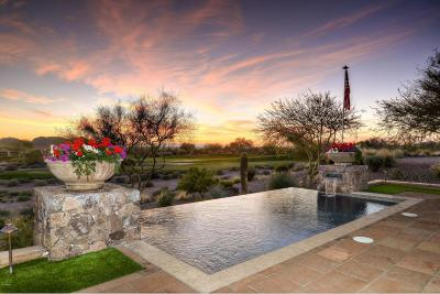 Superstition Mountain Single Family Home For Sale: 2522 S Moonlight Drive