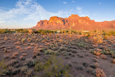 Apache Junction AZ Residential Lots & Land For Sale: $206,000