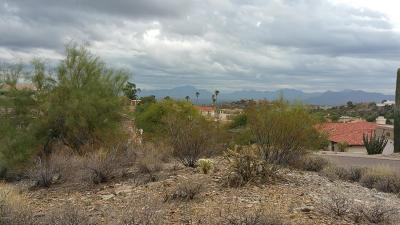 Fountain Hills Residential Lots & Land For Sale: 15612 E Scorpion Drive