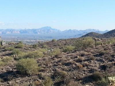 Fountain Hills Residential Lots & Land For Sale: 13811 E Coyote Way