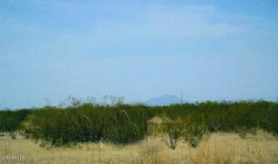 Wittmann Residential Lots & Land For Sale: W Bunker Peak Road