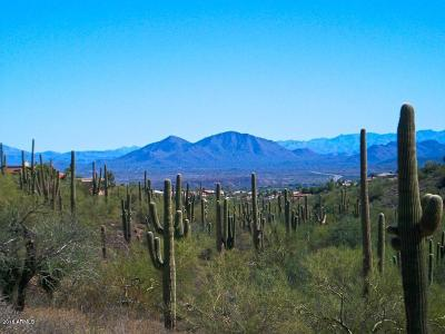 Fountain Hills Residential Lots & Land For Sale: 16210 E Sawik Circle