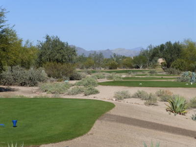 Rio Verde Residential Lots & Land For Sale: 26614 N Aguila Road