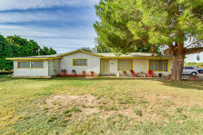 San Tan Valley Single Family Home For Sale: 40122 N Gantzel Road
