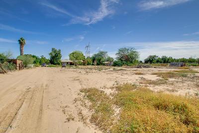 Queen Creek Residential Lots & Land For Sale: 40062 N Gantzel Road
