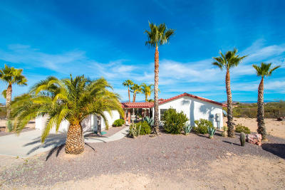 Wickenburg Single Family Home For Sale: 35395 S State Route 93 Highway