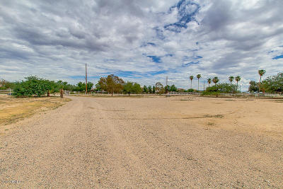 San Tan Valley AZ Residential Lots & Land For Sale: $699,999