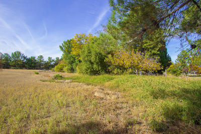 Gilbert Residential Lots & Land For Sale: 300 S 29th Place