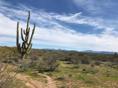 Scottsdale Residential Lots & Land For Sale: 139xx E Leisure Lane