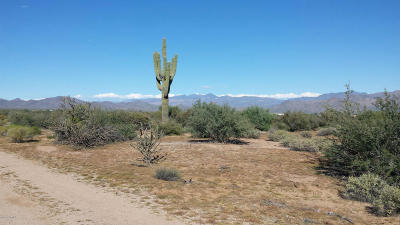 Scottsdale Residential Lots & Land For Sale: 165xxx E Dale Lane