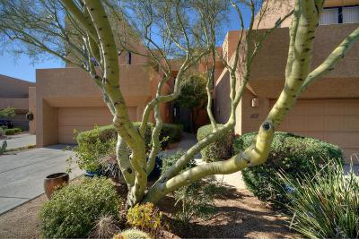 Scottsdale Condo/Townhouse For Sale: 25555 N Windy Walk Drive #6