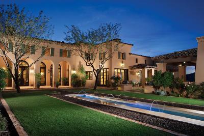 Anthem, Avondale, Chandler, Glendale, Goodyear, Mesa, Peoria, Scottsdale, Tempe, Wittmann Single Family Home For Sale: 11038 E Saguaro Canyon Trail