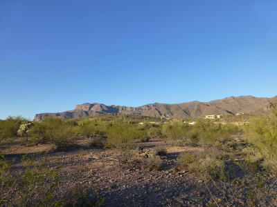 Gold Canyon Residential Lots & Land For Sale: 3767 S Painted Pony Trail