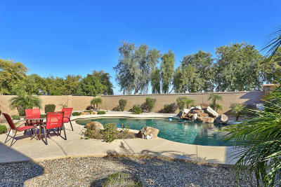 Waddell Single Family Home For Sale: 9903 N 179th Drive
