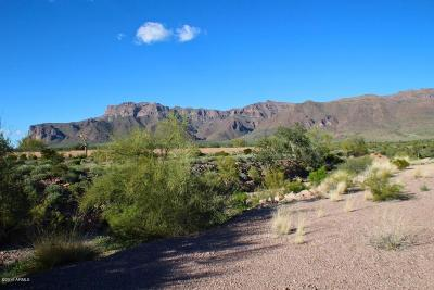 Superstition Mountain Residential Lots & Land For Sale: 9276 E Canyon View Trail