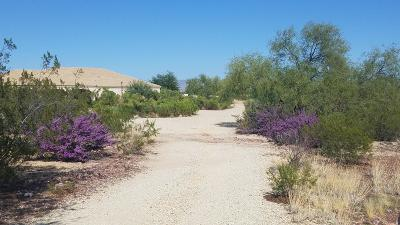 Wickenburg Single Family Home For Sale: 21280 W Vista Royale Drive