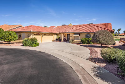 Mesa Single Family Home For Sale: 2569 Leisure World