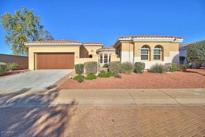 Sun City West Single Family Home For Sale: 22302 N Padaro Drive