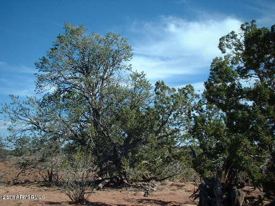Coconino County Residential Lots & Land For Sale: 3961 Lasso Loop