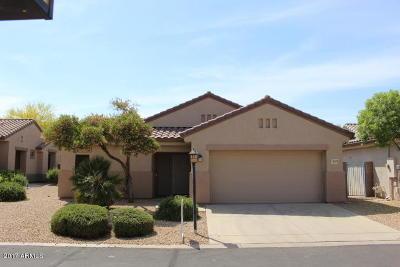 Surprise Single Family Home For Sale: 15879 N Desert Garden Drive
